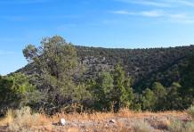 Utah No. 1
