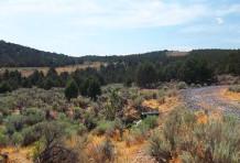 Saddle View 1b